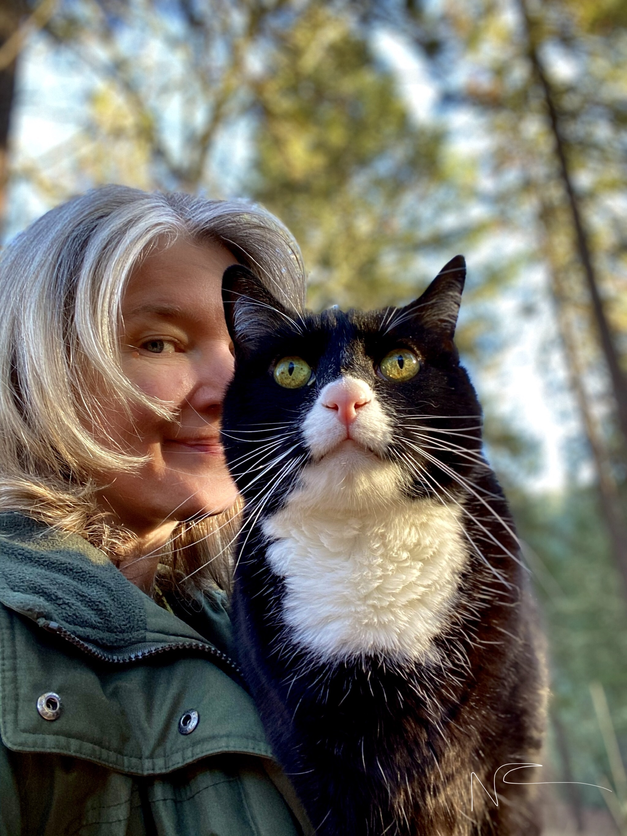 Time Out in Nature With Mr. Cat…